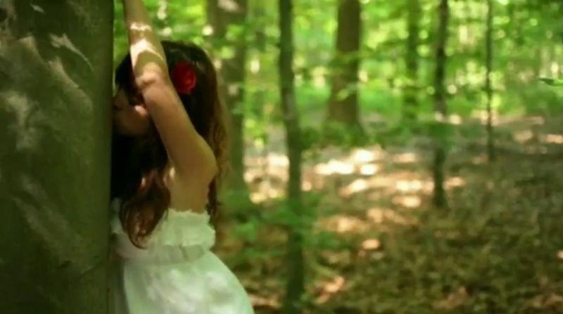 【デンドロフィリア】森林の奥で交わされる愛!人間は樹木に恋をする