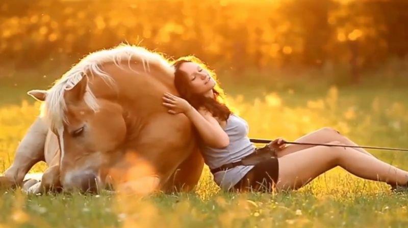 """【馬と美女】美しい牡馬とグラマーな女性が""""禁断の恋""""に落ちたら…"""